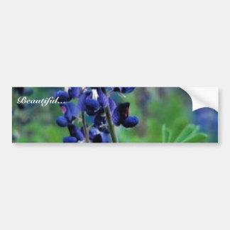 Texas Bluebonnet Bumper Stickers