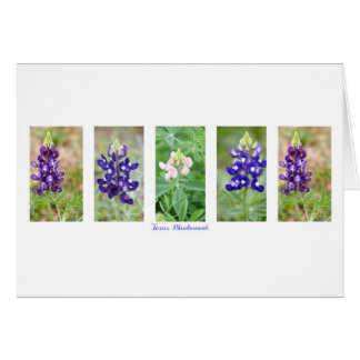 Texas Bluebonnet Collage Greeting Card