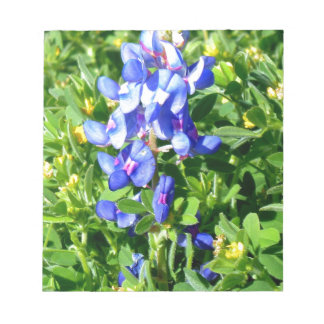 TEXAS BlueBonnet Memo Notepad