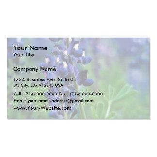 Texas Bluebonnet Pack Of Standard Business Cards