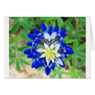 Texas Bluebonnet Top View Greeting Card