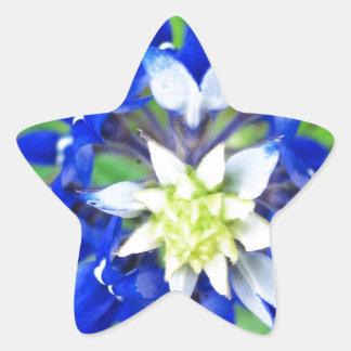 Texas Bluebonnet Top View Star Sticker