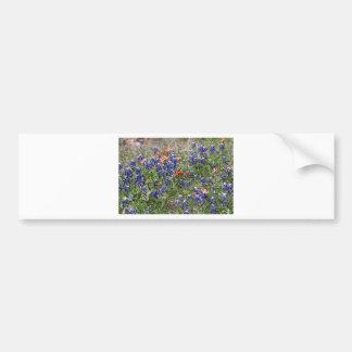 Texas Bluebonnets & Indian Paintbrush Wildflowers Bumper Sticker