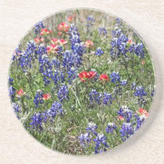 Texas Bluebonnets & Indian Paintbrush Wildflowers Drink Coasters