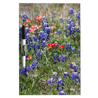 Texas Bluebonnets & Indian Paintbrush Wildflowers Dry Erase Board