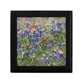 Texas Bluebonnets & Indian Paintbrush Wildflowers Trinket Boxes