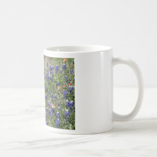 Texas Bluebonnets & Indian Paintbrush Wildflowers Mugs