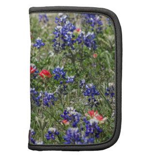 Texas Bluebonnets & Indian Paintbrush Wildflowers Organizers