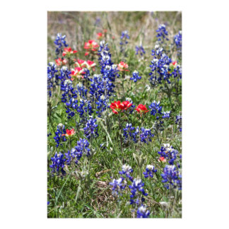Texas Bluebonnets & Indian Paintbrush Wildflowers Stationery