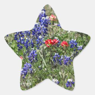 Texas Bluebonnets & Indian Paintbrush Wildflowers Star Sticker