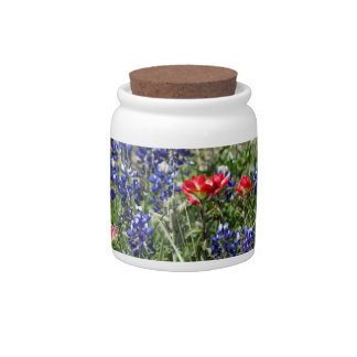 Texas Bluebonnets & Indian Paintbrush Wildflowers Candy Jars
