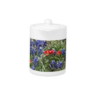 Texas Bluebonnets & Indian Paintbrush Wildflowers