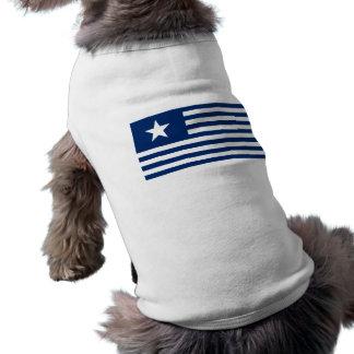 Texas Lone Star and Stripes - Blue Shirt