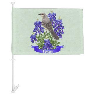 Texas State Bird & Flower Sage Green Car Flag