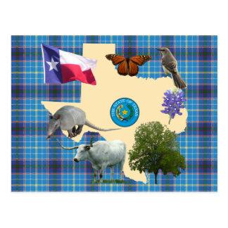 Texas State Symbols Postcard