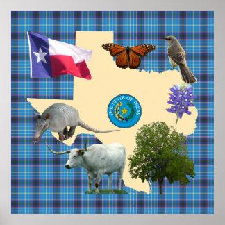 Texas State Symbols Poster