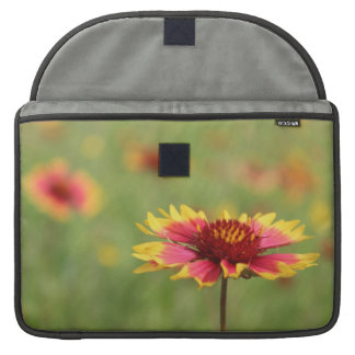Texas Wildflower - Indian Blanket Flower Sleeve For MacBook Pro