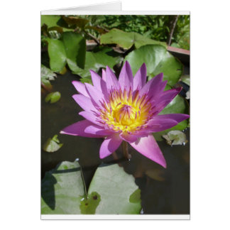 Thai Lotus Flower Card