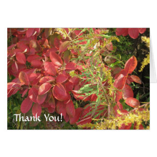 Thank You! Greeting Cards