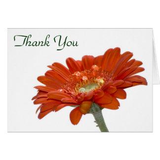 Thank You Card - Orange Daisy Gerbera Flower