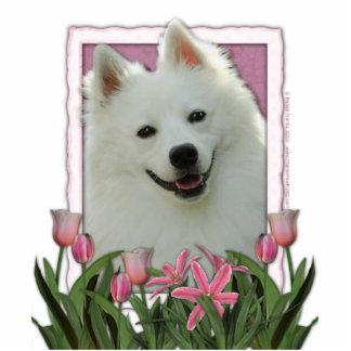 Thank You - Pink Tulips - American Eskimo Photo Sculpture