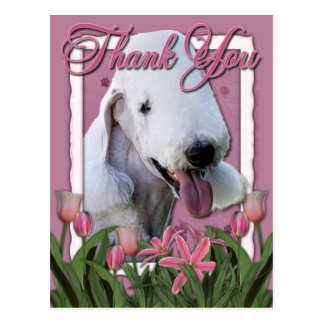Thank You - Pink Tulips - Bedlington Terrier Postcard