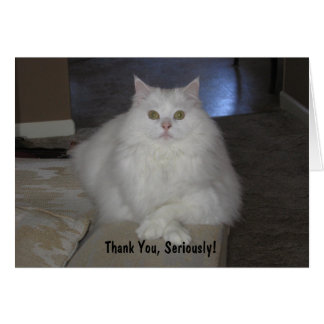 Thank You, Seriously! Greeting Card