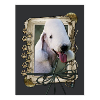 Thank You - Stone Paws - Bedlington Terrier Postcard