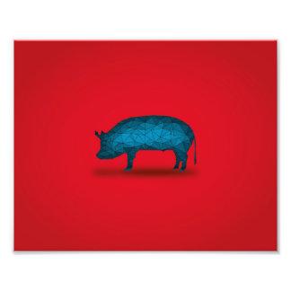 That'll do Pig... Photo