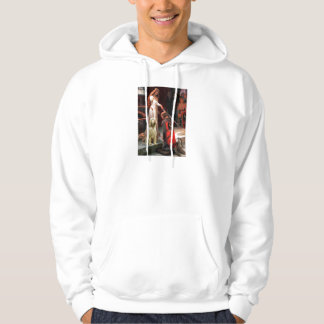 The Accolade - Spinone Italiano 5 Hoodie