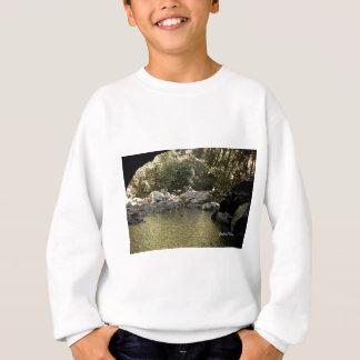 The Arch Sweatshirt