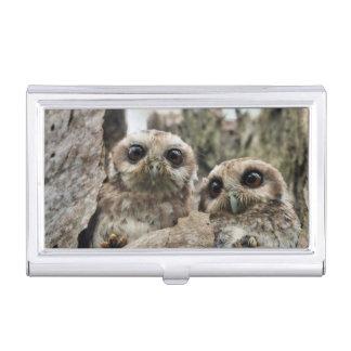 The Bare-legged Owl Or Cuban Screech Owl Business Card Holder