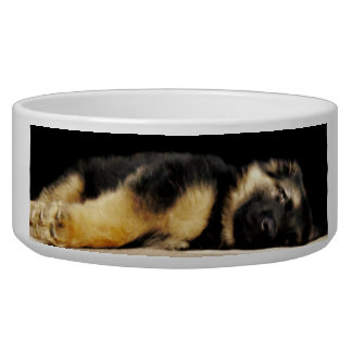 The Best Dog Bowl Ever!