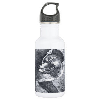 the big bad wolf 532 ml water bottle