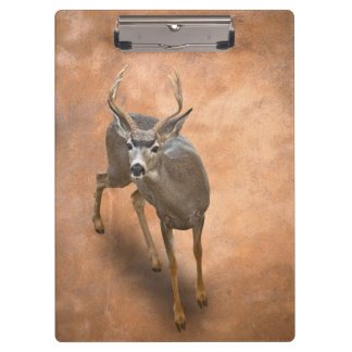 THE BUCK STOPS HERE CLIPBOARDS
