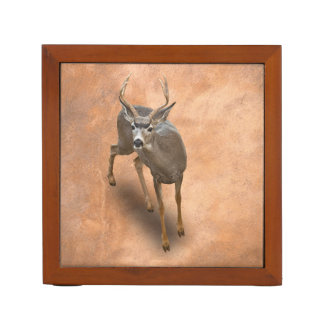 THE BUCK STOPS HERE DESK ORGANIZER