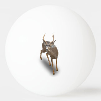 THE BUCK STOPS HERE PING PONG BALL