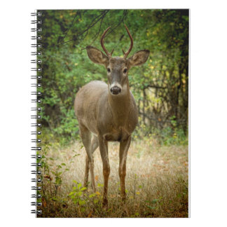 The Buck Stops Here Notebook