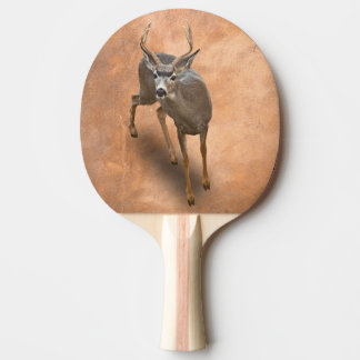THE BUCK STOPS HERE PING PONG PADDLE