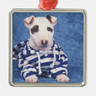 The Bull Terrier is a breed of dog in the Christmas Ornament