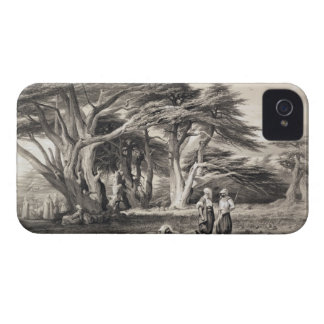 The Cedars of Lebanon, engraved by Freeman (sepia iPhone 4 Case-Mate Case