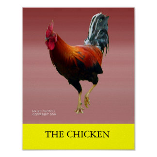 THE CHICKEN POSTER