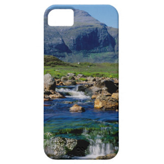 THE CLISHAM iPhone 5 COVERS