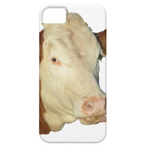 The Cow iPhone 5/5S Case