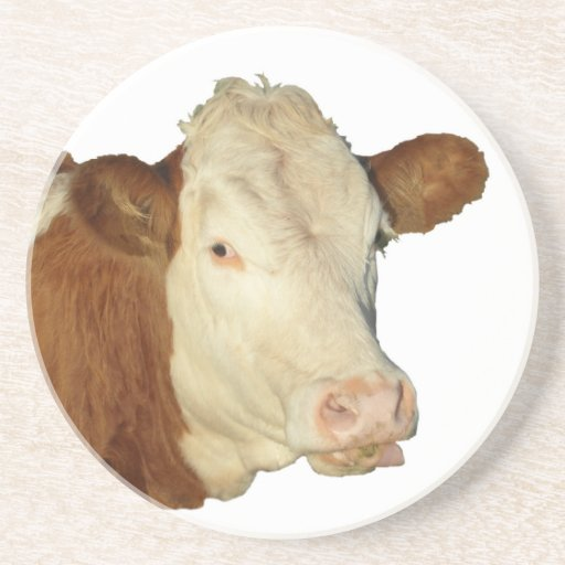 The Cow Coasters