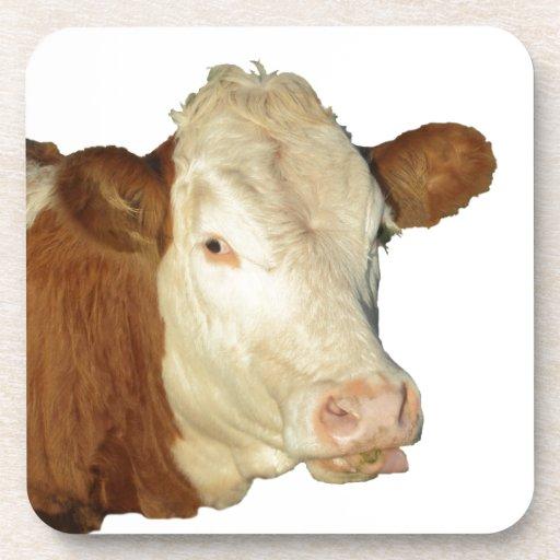 The Cow Coaster