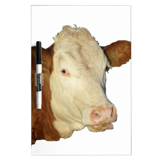 The Cow Dry Erase White Board