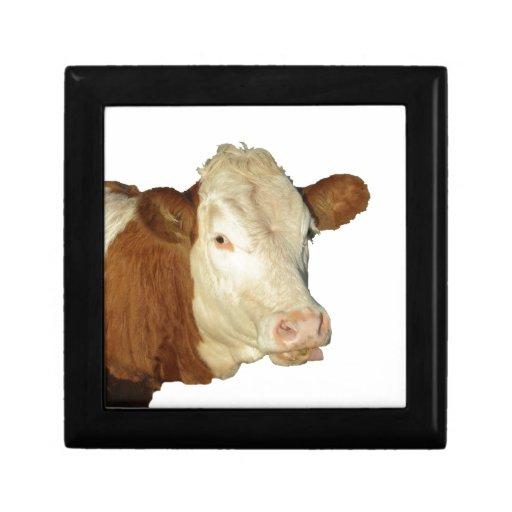 The Cow Keepsake Boxes