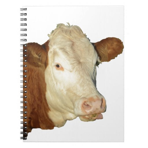 The Cow Note Books