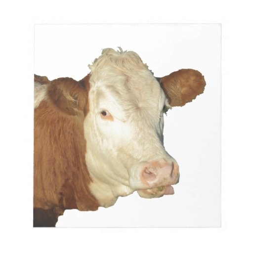 The Cow Memo Notepads